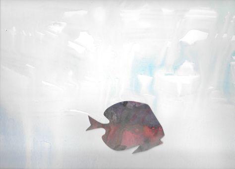 DS_oceanfish105832614