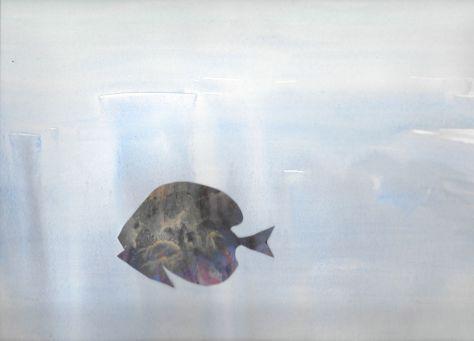 DS_oceanfish_105632614